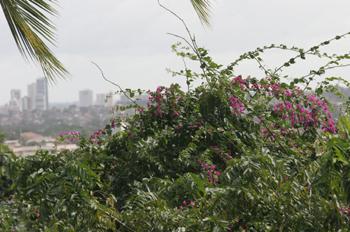 Vistas de Recife desde Olinda, Pernambuco, Brasil