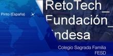 Informe Quincenal (3) RetoTech SAFA FESD Pinto