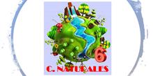 CIENCIAS NATURALES 6º