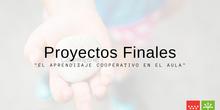 Proyectos Finales curso en línea