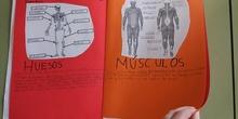 Lapbook - Mi atlas del cuerpo humano (3º de primaria)