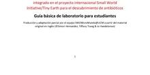 Guía básica del proyecto SWI