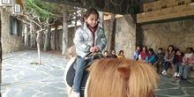 Excursión a la granja (Infantil) 2