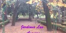 Vídeo modificado Jardines CRIF Las Acacias