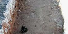Excavación de la zanja