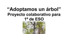 """""""Adoptamos un árbol"""". Proyecto colaborativo para 1º de ESO (12 años)"""