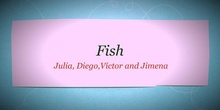 P2_NS Fish B