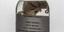 IES_RAMIRODEMAEZTU_BIOLOGIA_075