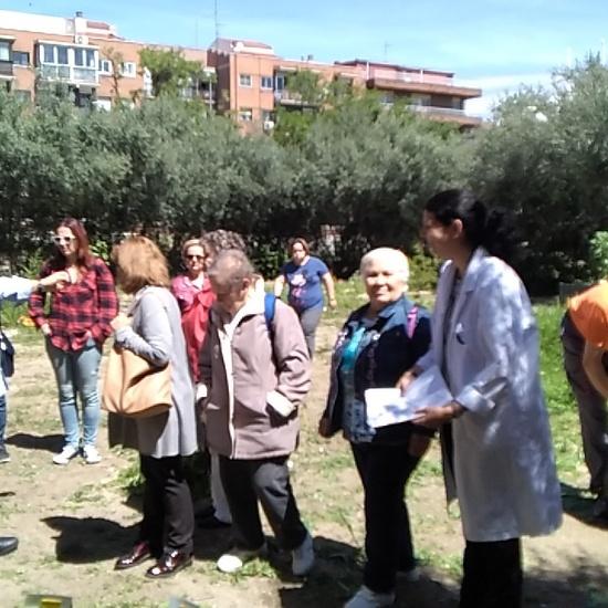 Jornadas Ciencia 2019_Visita Huerto (3)