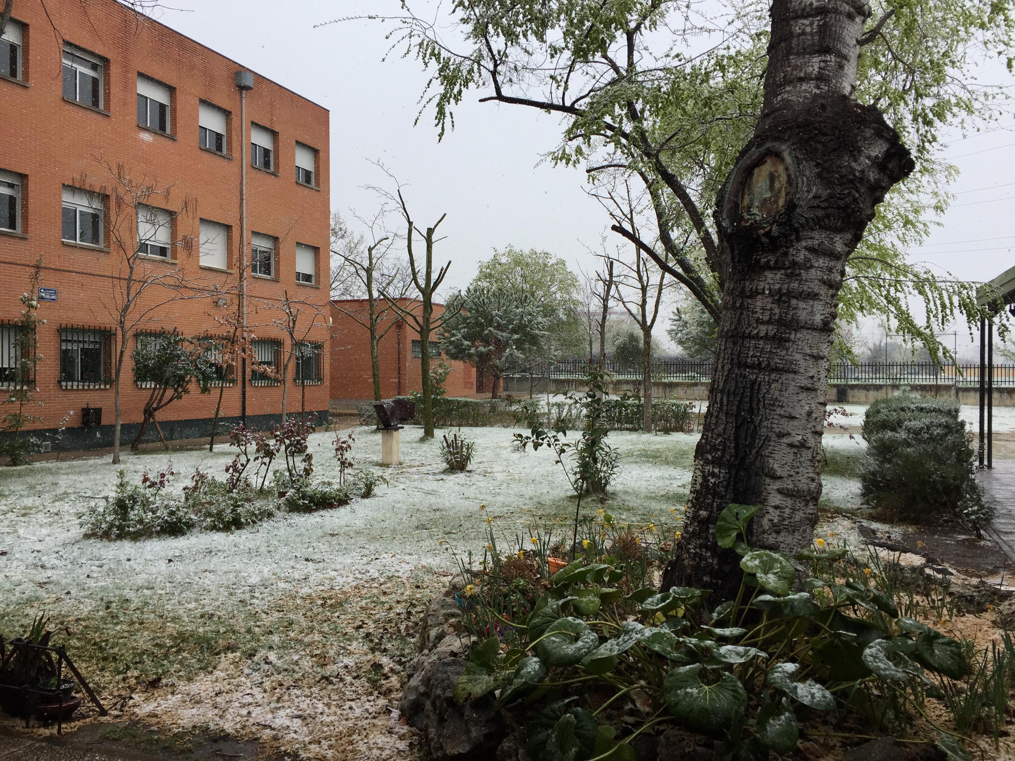 El IES Clara Campoamor nevado