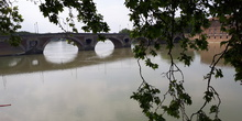 Viaje Toulouse 2018 3