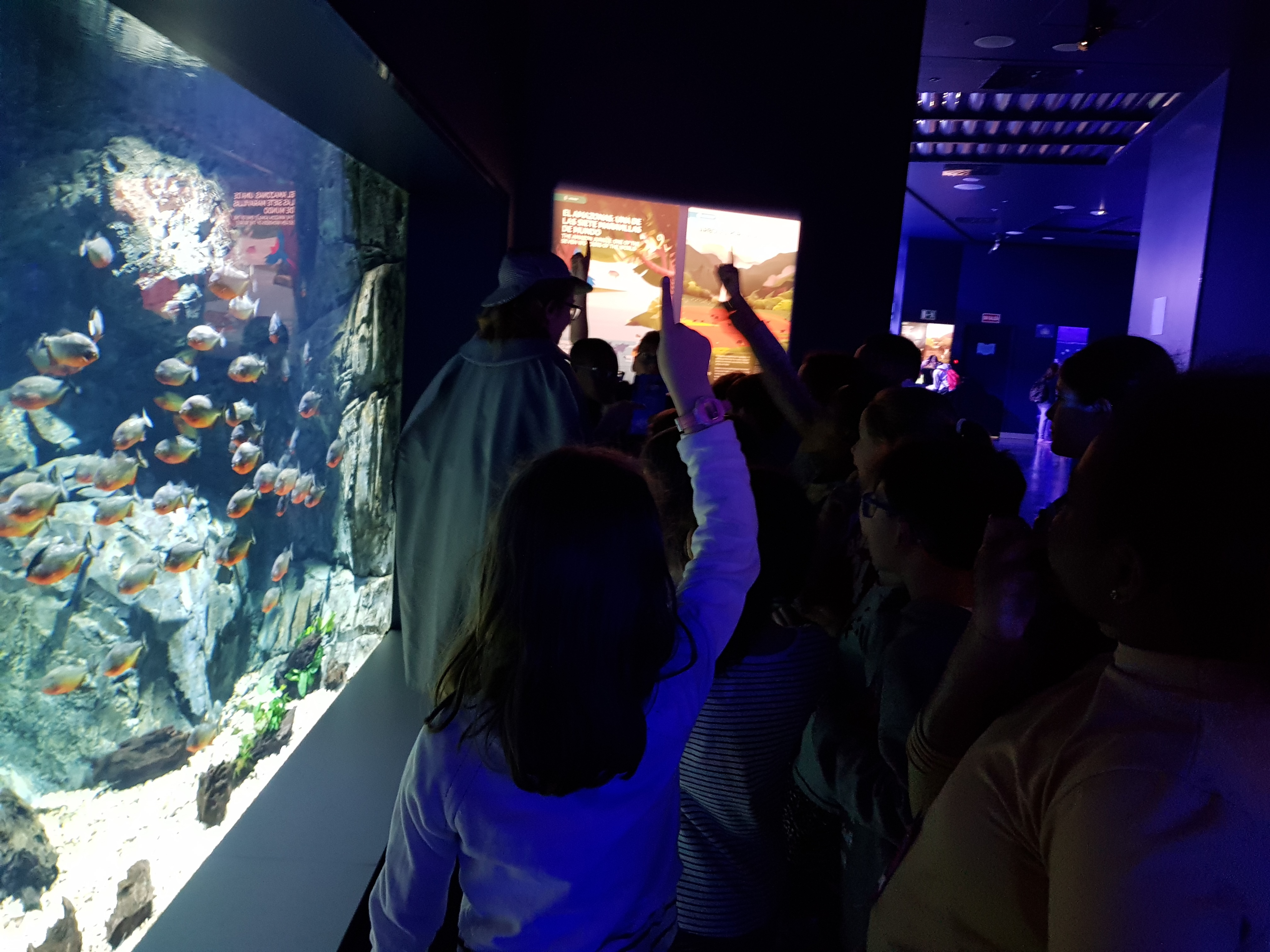 Fotos Aquarium Xanadú 3ºB 15