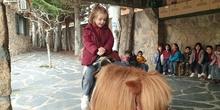 Excursión a la granja (Infantil) 5