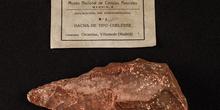 IES_SANISIDRO_MUSEO_Prehistoria_013