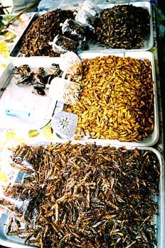 Puesto de insectos, Tailandia