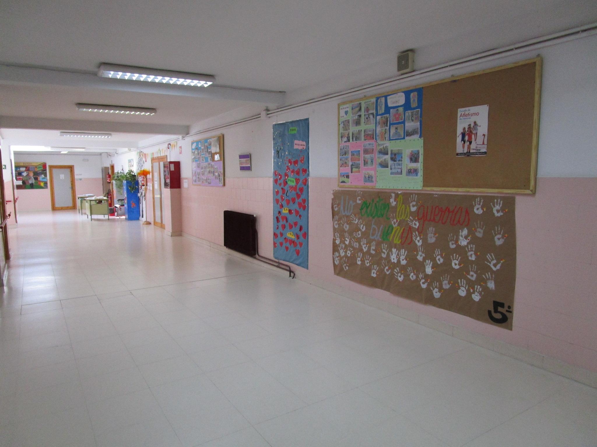 primaria 5