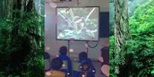 Viaje a la selva amazónica