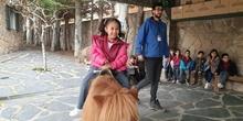Excursión a la granja (Infantil) 9
