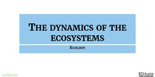 The dynamics of ecosystems