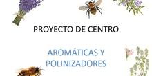 Aromáticas y Polinizadores en el IES Lázaro Cárdenas