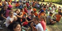 2019_10_11_5ºB disfruta con la actividad de senderismo en Cercedilla_CEIP FDLR_Las Rozas 7