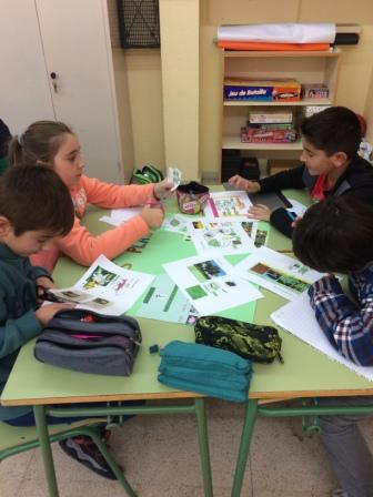 2016_12_Quinto A_Aprendizaje Cooperativo en CCNN 18