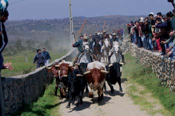 Encierro en la raya luso-española, Portugal