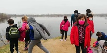 Visit to the Velilla Lagoons 3ºB