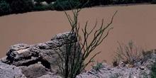 Agua turbia