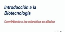 Capítulo 1º: ¿Qué es la biotecnología?