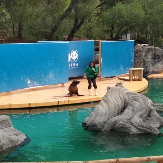 Visita al zoo 2019 7