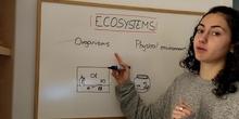 ECOSYSTEMS PART1