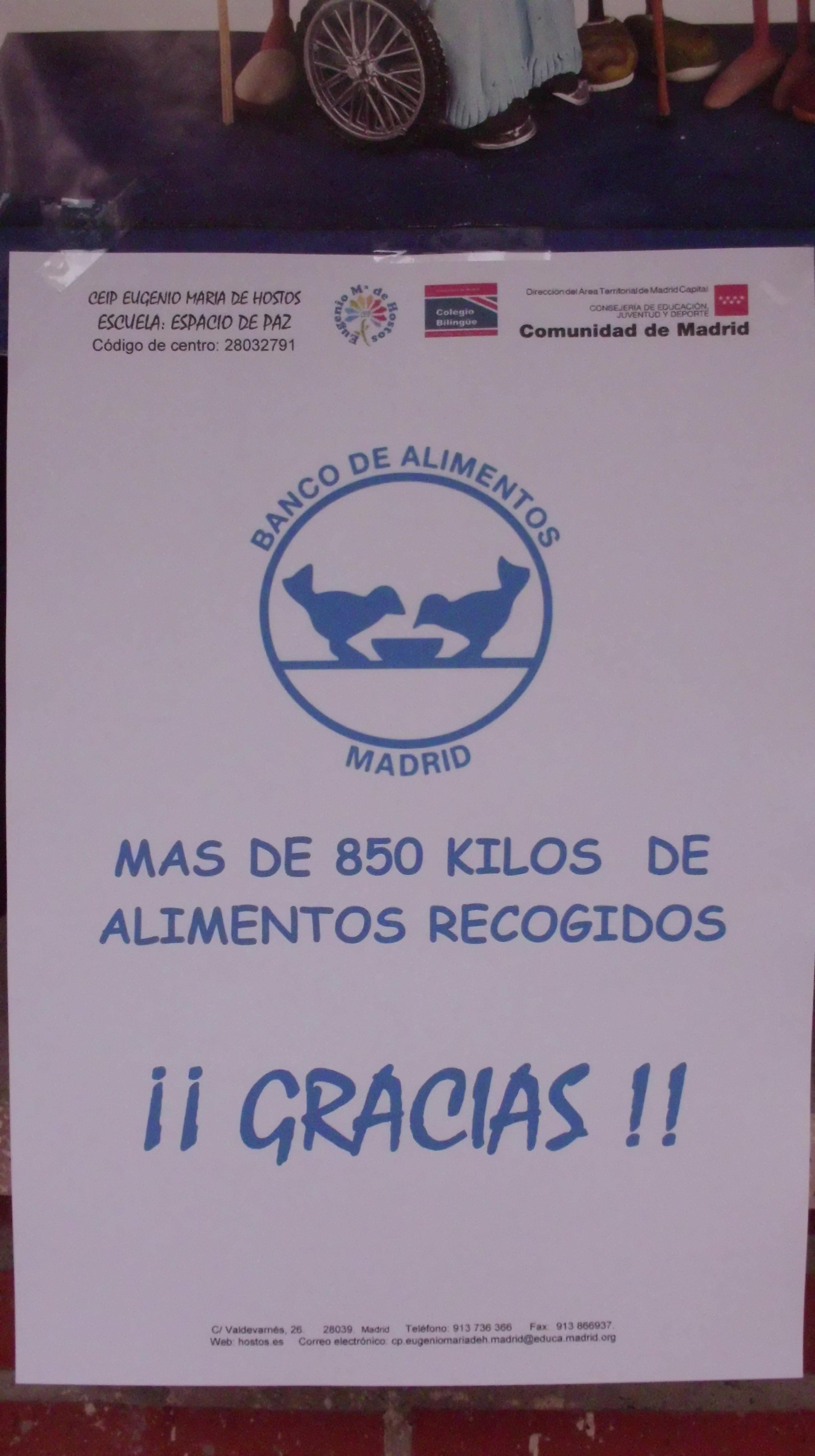GRAN RECOGIDA DE ALIMENTOS 2