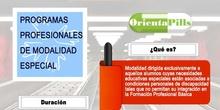 Infografía PROGRAMAS PROFESIONALES de MODALIDAD ESPECIAL ORIENTAPILLS