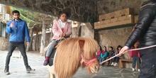 Excursión a la granja (Infantil) 8