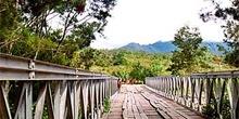 Puente con acceso para vehículos, Irian Jaya, Indonesia