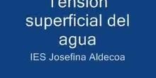 Tensión superficial del agua
