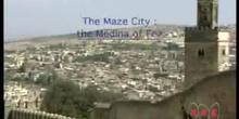 The Maze City: Medina of Fez: UNESCO Culture Sector