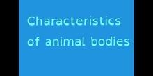 PRIMARIA - TERCERO - CHARACTERISTICS OF ANIMAL BODIES - NATURAL SCIENCE - NEREA, CARMEN, FERNANDO, ANTONIO - FORMACIÓN