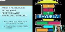 IES Rayuela - Información sobre Programas Profesionales Especiales (2021)