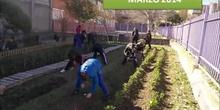 HUERTO ECOLÓGICO DEL C.P. PABLO PICASSO- MARZO 2014