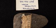 IES_SANISIDRO_MUSEO_Prehistoria_020