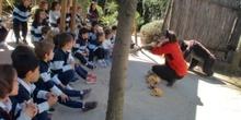 2017_04_04_Infantil 4 años en Arqueopinto 1 10