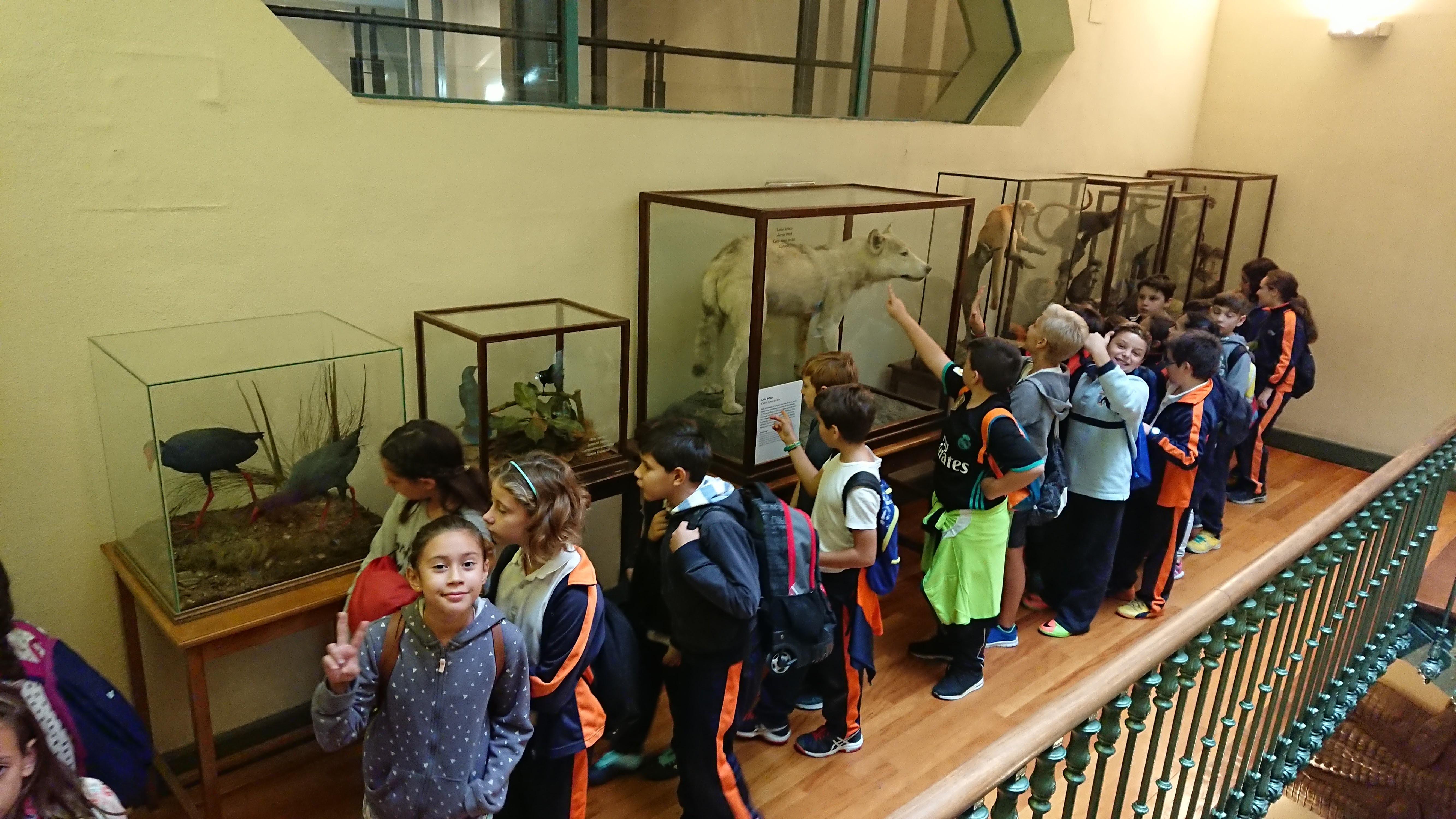 Excursión al museo de ciencias 9