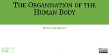 The Organisation of the Human Body
