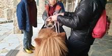 Excursión a la granja (Infantil) 19