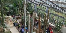 Fotos visita Museo CCNN y Botánico 8