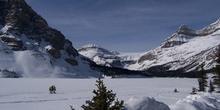 Glaciar y Lago Bow helado, Parque Nacional Banff