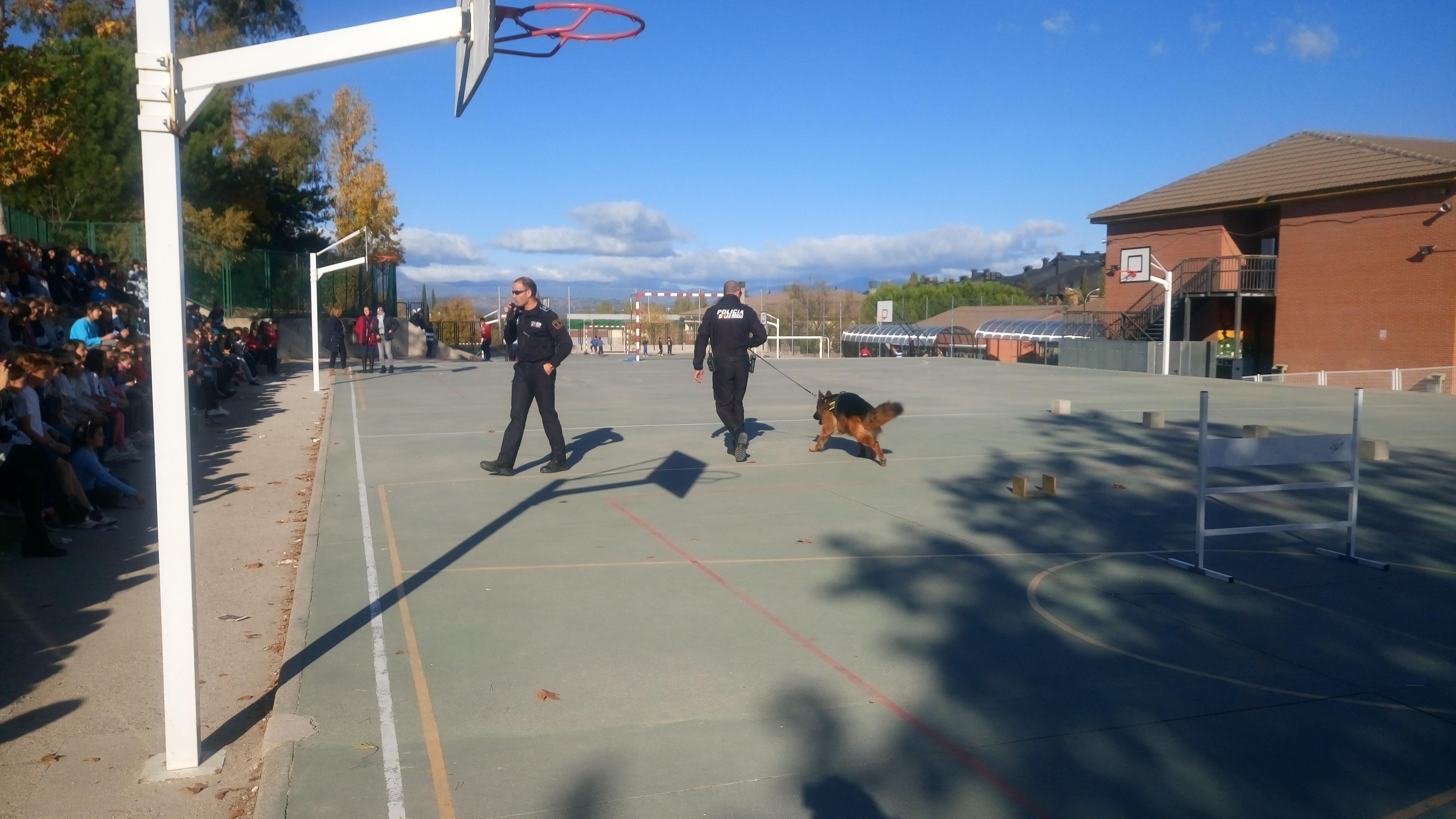La Unidad Canina de la Policia Municipal de Las Rozas visita el cole_CEIP FDLR_Las Rozas_2017  9