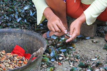 Limpiando mejillones, Jakarta